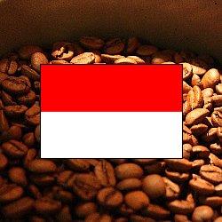 画像1: インドネシア・マンデリン・アチェ【200g】