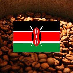 画像1: ケニア キウニュ【100g】