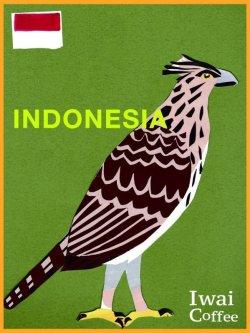 画像1: インドネシア・マンデリン・アチェ【500g】