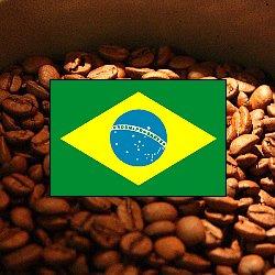 画像1: ブラジル ヴィラ・ボア【200g】